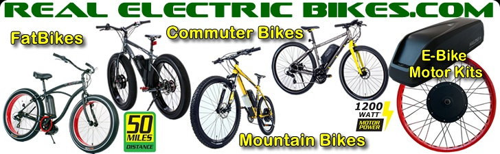 Real Electric Bikes offers electric pedal assist bicycles by Prodecotech, Giant Bicycles, Origin 8 Bicycles and Sun Bicycles including e-commuter bikes, e-mountain bikes, e-beach cruiser bikes, e-fat tire bikes, e-folding bicycles and much more.